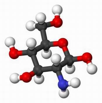 Cấu trúc phân tử của Glucosamin