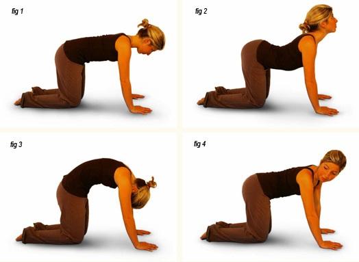 8-bai-tap-yoga-giup-chua-dau-kinh-toa-hieu-qua-7