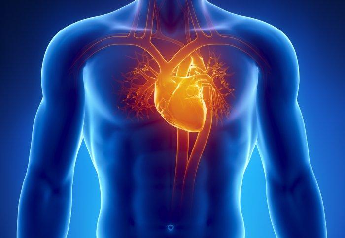 Tê tay dấu hiệu của bệnh tim